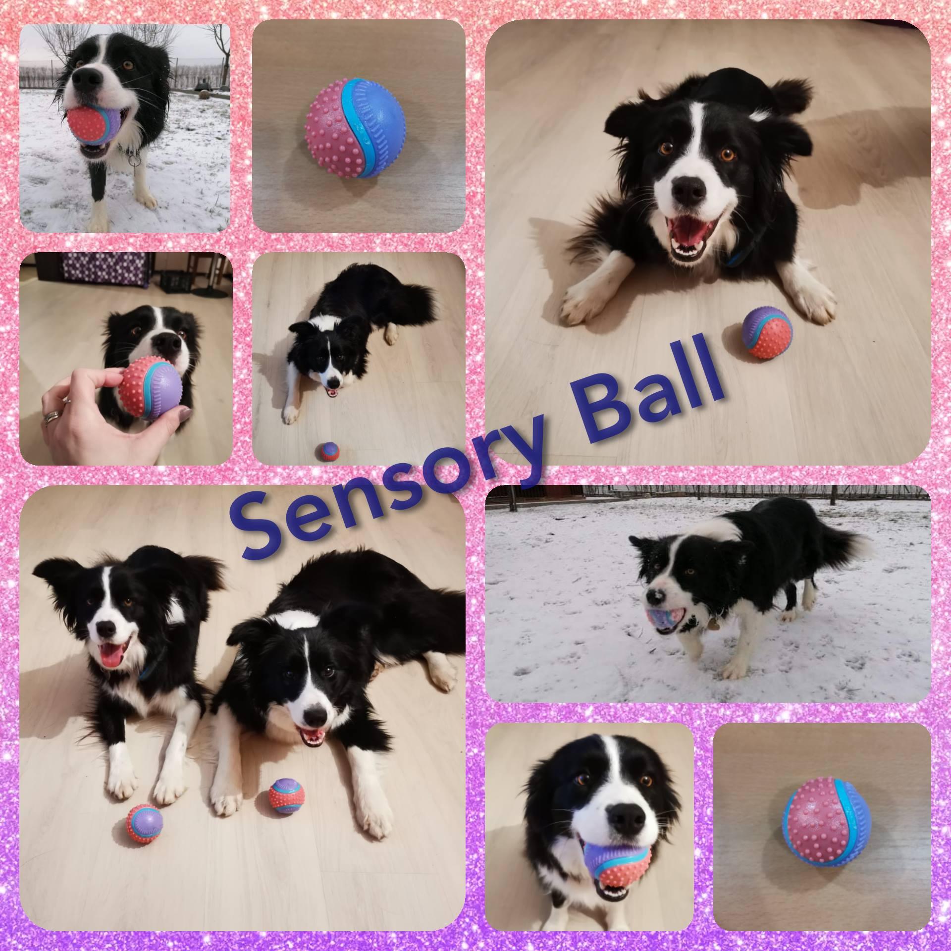 S Meggy a Triss jsme pro Vás testovaly míček od značky BUSTER - Sensory Ball